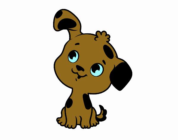 Cachorrito de perro