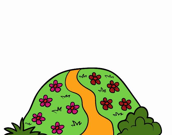 Colina