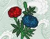 Dibujo Flor de las maravillas pintado por Sofia8884