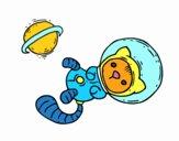 Gatito astronauta
