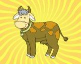Vaca de granja
