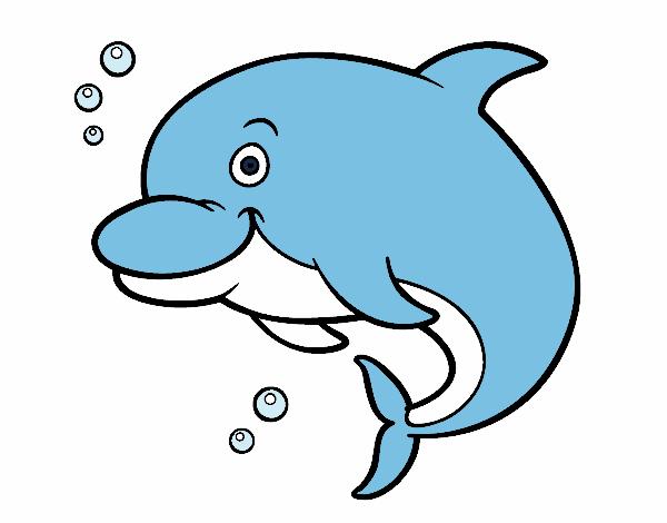 Dibujo Delfín bufeo pintado por albabm24