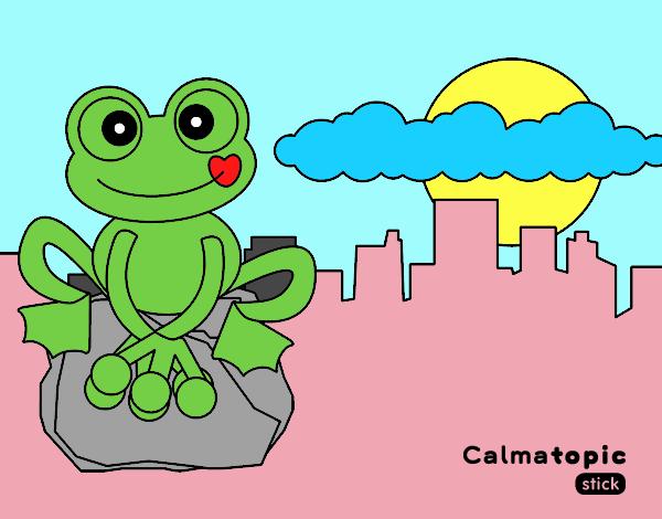 Rana Calmatopic en la ciudad
