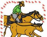 Vaquero y vaca