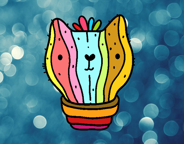 Cactus gato