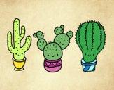 Dibujo 3 mini cactus pintado por Saritita