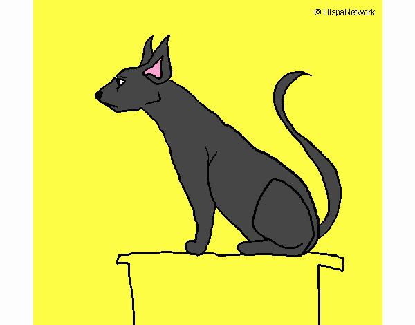 Gato egipcio II