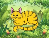 Dibujo Gato joven pintado por camilator