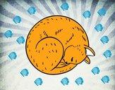 Gato reposando