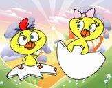 Pareja de pollitos