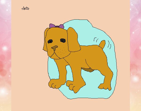 Dibujo Perrita pintado por xXPucchiXx