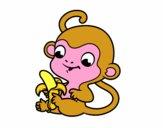 Monito con plátano