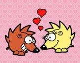 Erizos enamorados