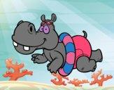 Hipopótamo nadando