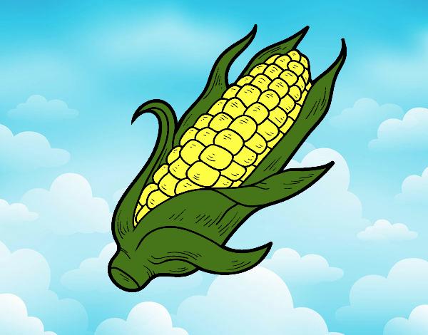 Dibujo Una mazorca de maíz pintado por Kerstin
