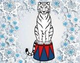 Dibujo Tigre de circo pintado por superchic