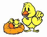 Mamá pájara