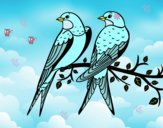 Dibujo Pareja de pájaros pintado por rastais