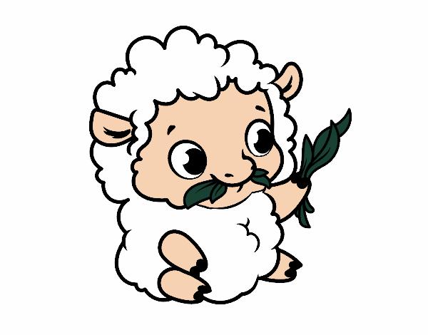 Dibujo Oveja bebé pintado por albabm24