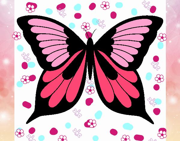 mariposa marabillosa