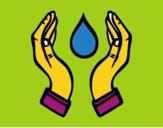 Agua Ecológica