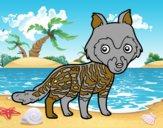 Civeta africana