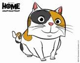 Home - Pig