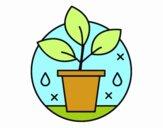 Dibujo Cultivo Ecológico pintado por Luciaa99