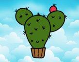 Cactus nopal