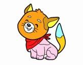 Gato con bandana