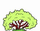 Un arbusto
