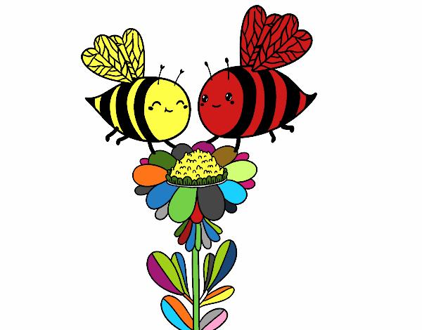 Pareja de abejas