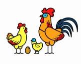 Familia gallina