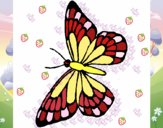 Mariposa 10