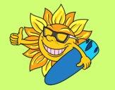 Sol Surfero