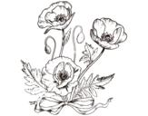 Dibujo de Amapolas silvestres para colorear