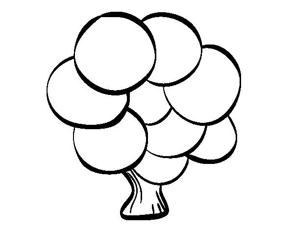 Dibujo de Árbol con hojas redondas para Colorear