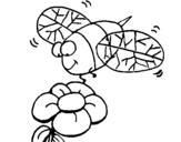 Dibujo de Avispa y flor