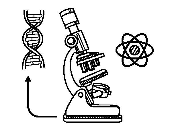 Dibujo de Biologa para Colorear  Dibujosnet