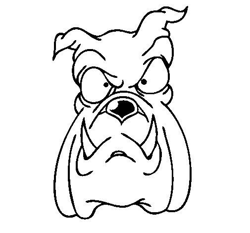 Dibujo de Bull dog II para Colorear