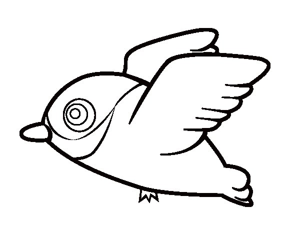 Dibujo de Cardenal para Colorear  Dibujosnet