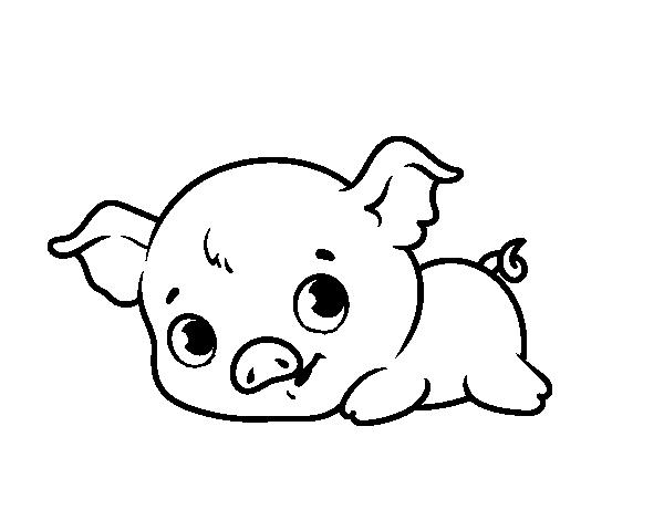 Dibujos De Animales Adorables Para Colorear: Dibujo De Cerdito Bebé Para Colorear