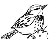 Dibujo de Chochín para colorear