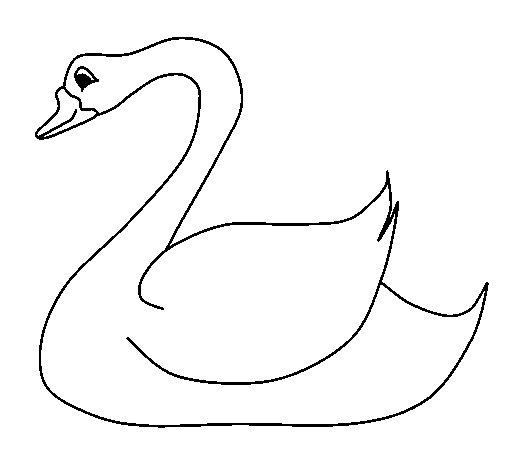Dibujo de Cisne 1 para Colorear