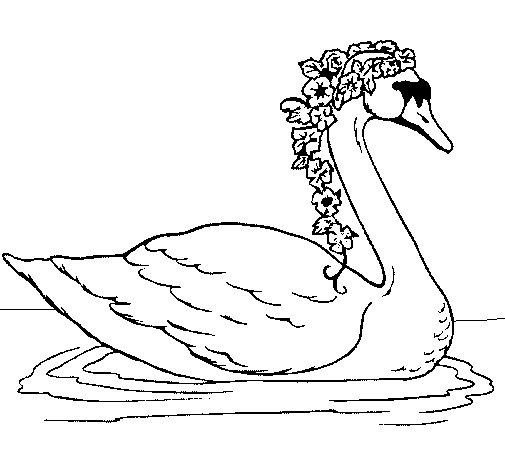 Dibujo de Cisne con flores para Colorear  Dibujosnet