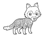 Dibujo de Civeta africana  para colorear