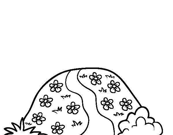 Dibujo de Colina para Colorear