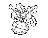 Dibujo de Colirrábano para colorear