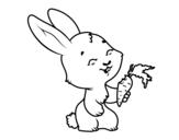 Dibujo de Conejito sonriente para colorear