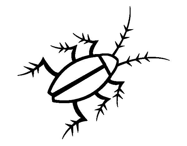 Dibujo de Cucaracha negra para Colorear